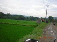 Pemandangan Awal 2010 : BSD, Rumpin s.d. Parung Panjang