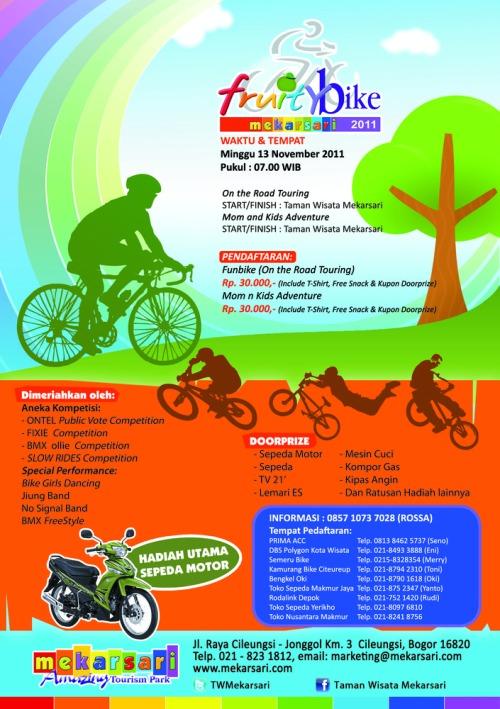 Flyer_fruity_bike_uk_a5