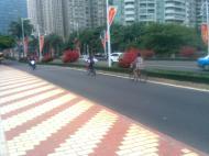jalur khusus sepeda