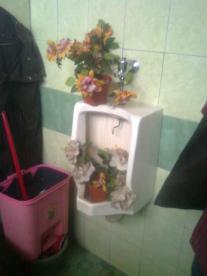toilet2046
